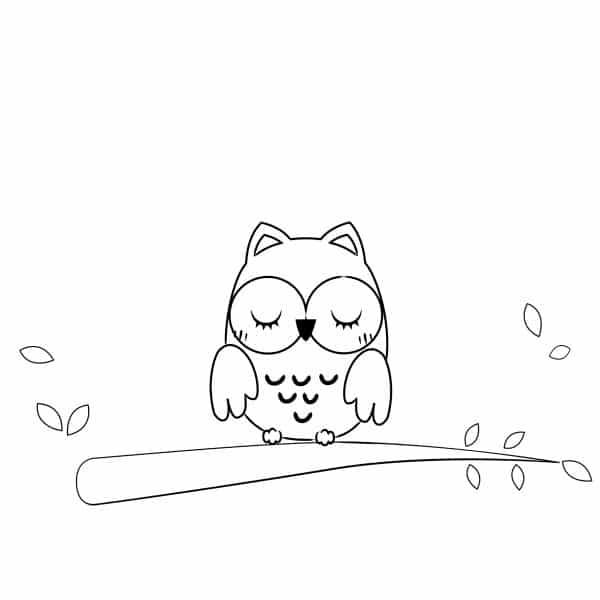 illustrazione gufetto addormentato sul ramo